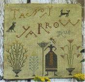 Tansy-Yarrow-Rue