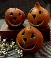 Gourd Jack O Lanterns