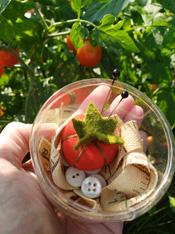 Itty Bitty Tomato Pincushion