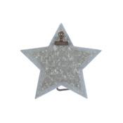 Tin Star Clip Easel